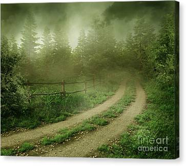 The Foggy Road Canvas Print by Boon Mee