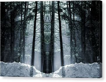 The Forest Is Alive Canvas Print by Dan Sproul