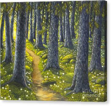 The Forest Path Canvas Print by Veikko Suikkanen