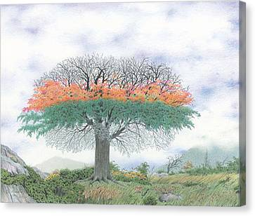 The Four Seasons Tree Canvas Print by Wilfrid Barbier