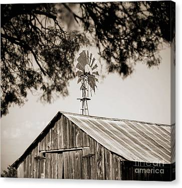 Canvas Print featuring the photograph The Framed Windmill by Amber Kresge