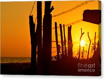 The Freedom Behind The Chains Of Life Canvas Print by Eliya Yosefyan