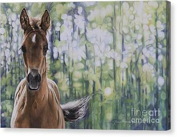 The Frilly Filly Canvas Print by Joni Beinborn