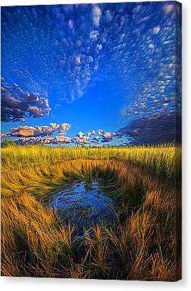 The Frog Pond Canvas Print by Phil Koch