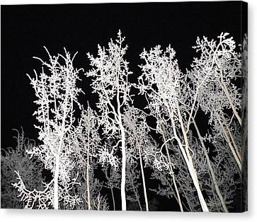 Canvas Print featuring the photograph The Frost Gleams By Night by Brian Boyle