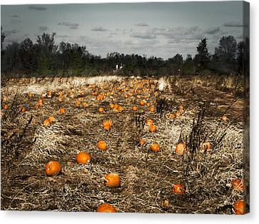 The Frost Is On The Pumpkins Canvas Print by Phil Welsher