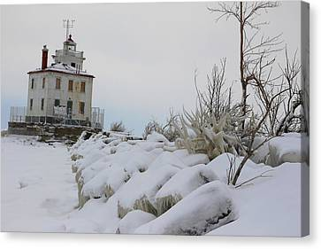 The Frozen Sentinel Canvas Print by Frederic Vigne