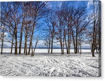 The Frozen Spring Canvas Print