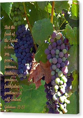 The Fruit Of The Spirit Canvas Print by Michele Avanti