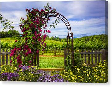 The Garden At The Winery Canvas Print