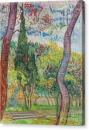 The Garden Of St Pauls Hospital Canvas Print by Vincent van Gogh