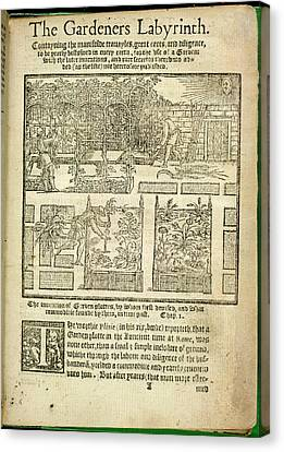 Garden Grown Canvas Print - The Gardeners Labyrinth by British Library