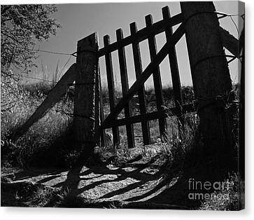 Canvas Print featuring the photograph The Gate by Inge Riis McDonald