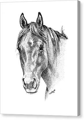 The Gentle Eye Horse Head Study Canvas Print by Renee Forth-Fukumoto