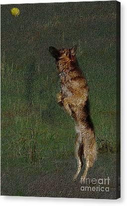 The German Shepherd Great Dog Canvas Print by Manjot Singh Sachdeva