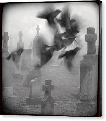 Birds In Graveyard Canvas Print - The Ghost Birds by Gothicrow Images