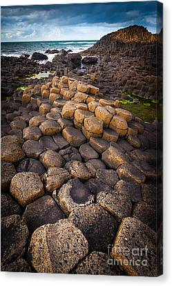 The Giant's Causeway - Rocky Road Canvas Print