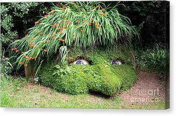 The Giant's Head Heligan Cornwall Canvas Print by Richard Brookes