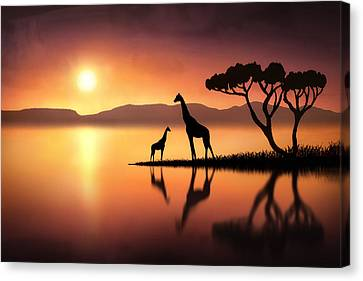 The Giraffes At Sunset Canvas Print by Jennifer Woodward