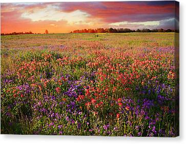 The Glory Of A Texas Sunset Canvas Print by Lynn Bauer