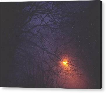 The Glow Of Snow Canvas Print by Carrie Ann Grippo-Pike