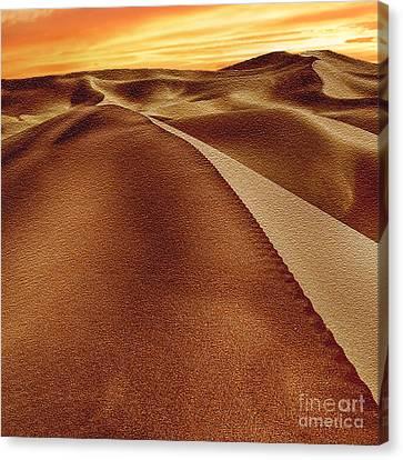 Nadine Canvas Print - The Golden Hour Anza Borrego Desert by Bob and Nadine Johnston