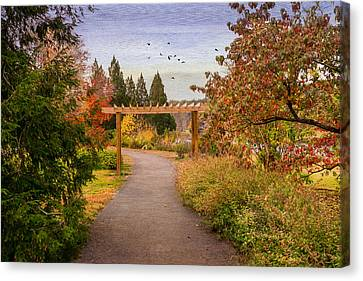 The Golden Path Canvas Print by Mary Timman