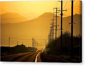 The Golden Road Canvas Print by Matt Harang