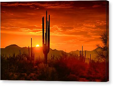 The Golden Southwest Skies  Canvas Print