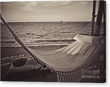 The Good Life Canvas Print by Valerie Morrison