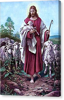 The Good Shepherd 1878 Bernhard Plockhorst Canvas Print by Movie Poster Prints