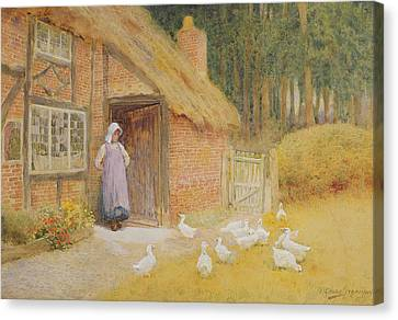 Flock Of Geese Canvas Print - The Goose Girl by Arthur Claude Strachan