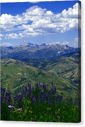 Canvas Print featuring the photograph The Grand And Lupines by Raymond Salani III