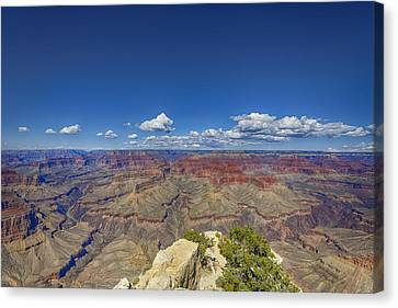 The Grand Canyon--another Look Canvas Print by Angela A Stanton