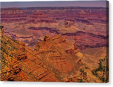 The Grand Canyon Iv Canvas Print by David Patterson