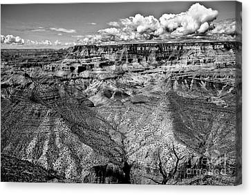 The Grand Canyon Canvas Print by Bob and Nadine Johnston