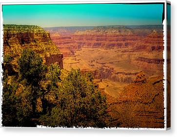 The Grand Canyon Vintage Americana Vii Canvas Print by David Patterson