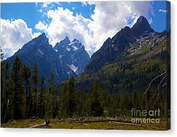 The Grand Tetons  Canvas Print by Terry Horstman