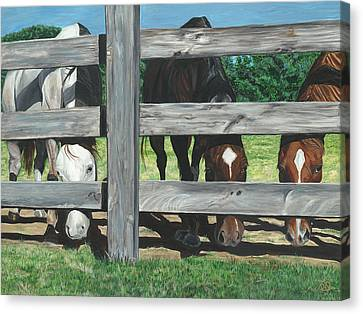 The Grass Is Always Greener... Canvas Print