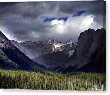 The Great Beyond Canvas Print by George Cousins