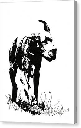 The Great Dane Canvas Print
