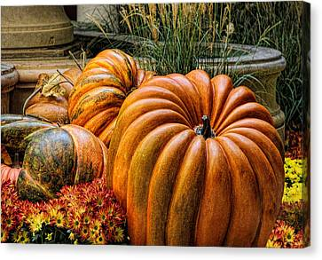 The Great Pumpkin Canvas Print by Tammy Espino