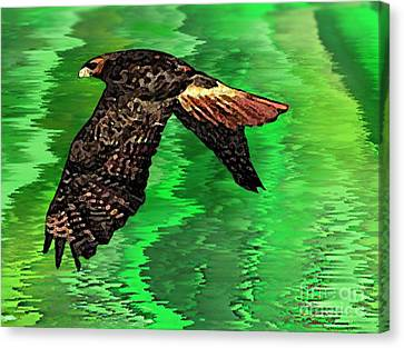 The Great Red Hawk  Canvas Print by Mario Perez
