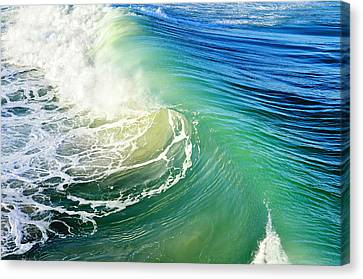 The Great Wave Canvas Print by Laura Fasulo