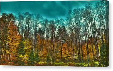 The Green Bridge Road In Autumn Canvas Print