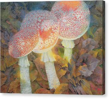Toadstools Canvas Print - The Green Man With Stinkhorns by Glyn Morgan