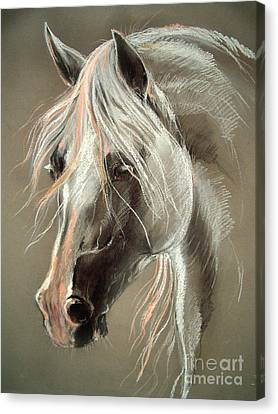 Horse Pastels Canvas Print - The Grey Horse Soft Pastel by Angel  Tarantella