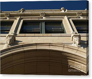 The Grove -- Looking Up Canvas Print by Anna Lisa Yoder