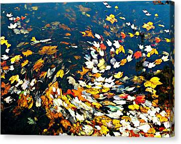 The Gutter Canvas Print by Diana Angstadt