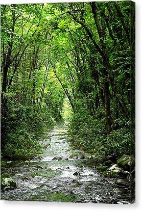 The Hall Of Water Canvas Print by Russell Clenney